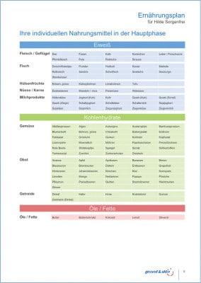 Ernährungplan
