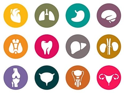 medical_icons2_color.cdr